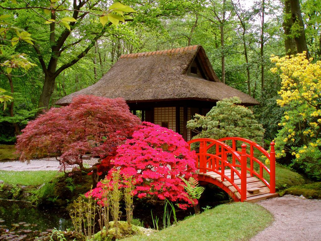 اكشاك الحديقة اليابانية في اسطنبول